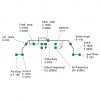 Weldability TIG 200 ACDC panel